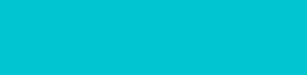 Huntress Logo – Wide Teal620